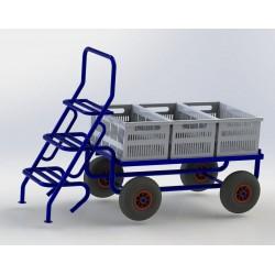 Carro recoleccion fruta + escalera